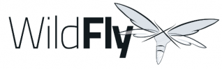 Wildfly Training Courses